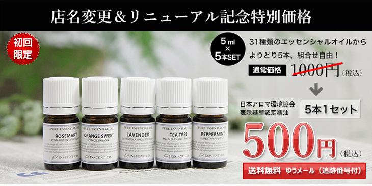 リニューアルキャンペーン500円